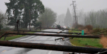 multiple poles down sized