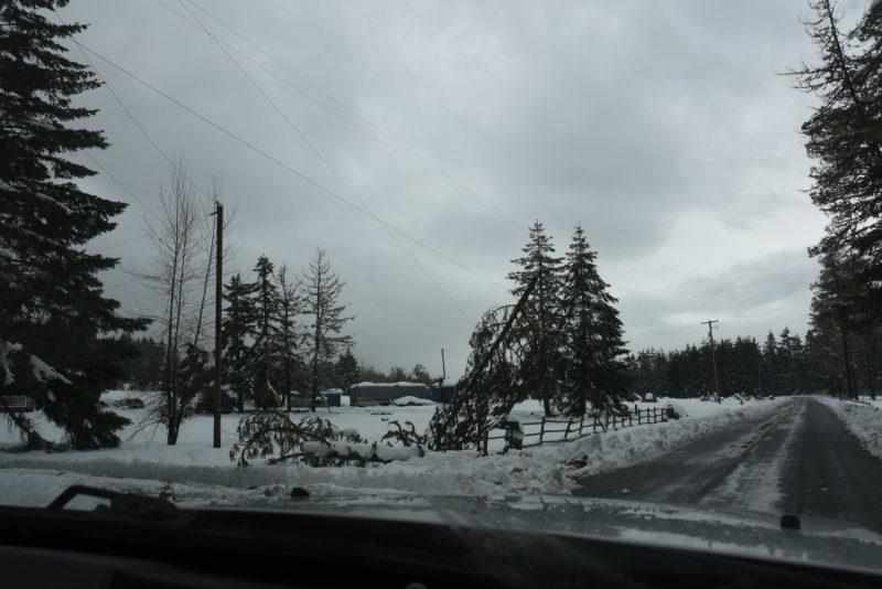 Storm damage of power poles near roads
