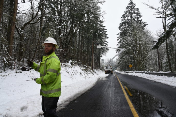 Tree Crew works on restoration efforts
