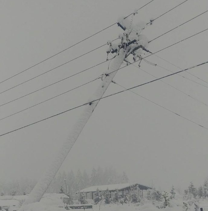 Leaning Power Pole