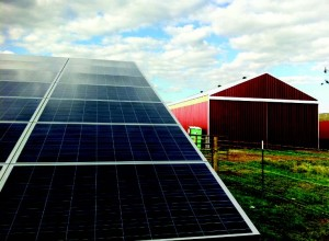 Sly Farms Solar Panels